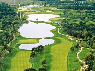 PGA TourGolf