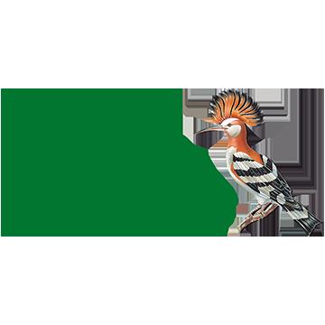 El Paraisogolf course